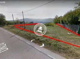 Vanzare teren constructii 14949mp, Schitu Duca, Schitu Duca