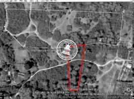 Vanzare teren constructii 5145 mp, Tomesti, Tomesti
