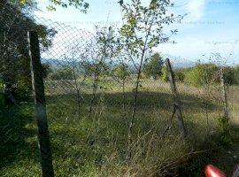 Teren zona Vila Tusa in Faget