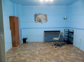 Spatiu birou casa 90 mp Grigorescu