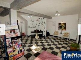 Vila de 10 camere pretabila orice activitate in zona Mosilor