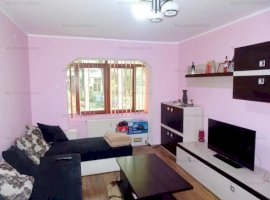 Vanzare apartament 2 camere, parter, mobilat si utilat complet, zona Nord