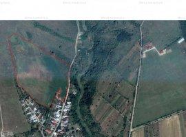 7 ha teren: 2,5 ha intravailan si 4,5 ha extravilan, in Pleasa