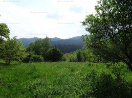 Vanzare teren intravilan agricol, in Varatec