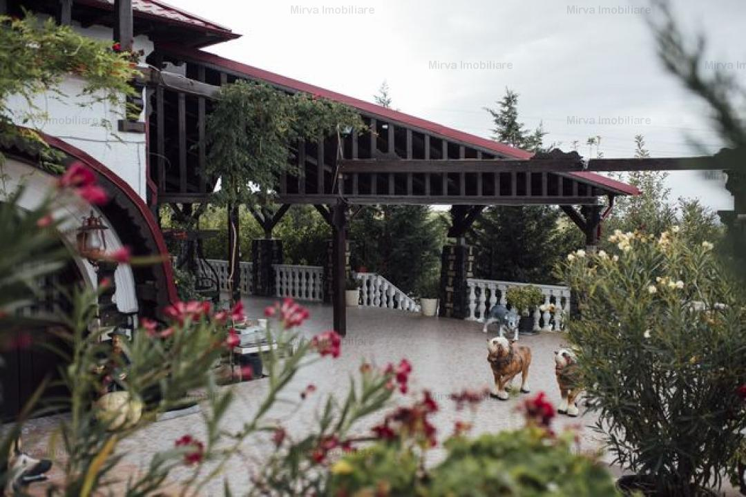 Vanzare 16 ha teren, cu conac, in Chitorani