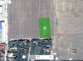 Teren cu potential de dezvoltare rezidentiala Paltinisu, Ialomita