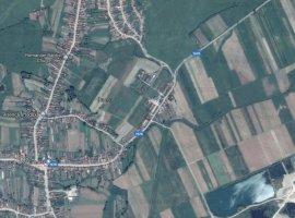 Spatiu industrial Bihor - Ineu (3 km de DN1)