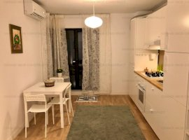 Inchiriere apartament tip Studio cu gradina si terasa - prima inchiriere