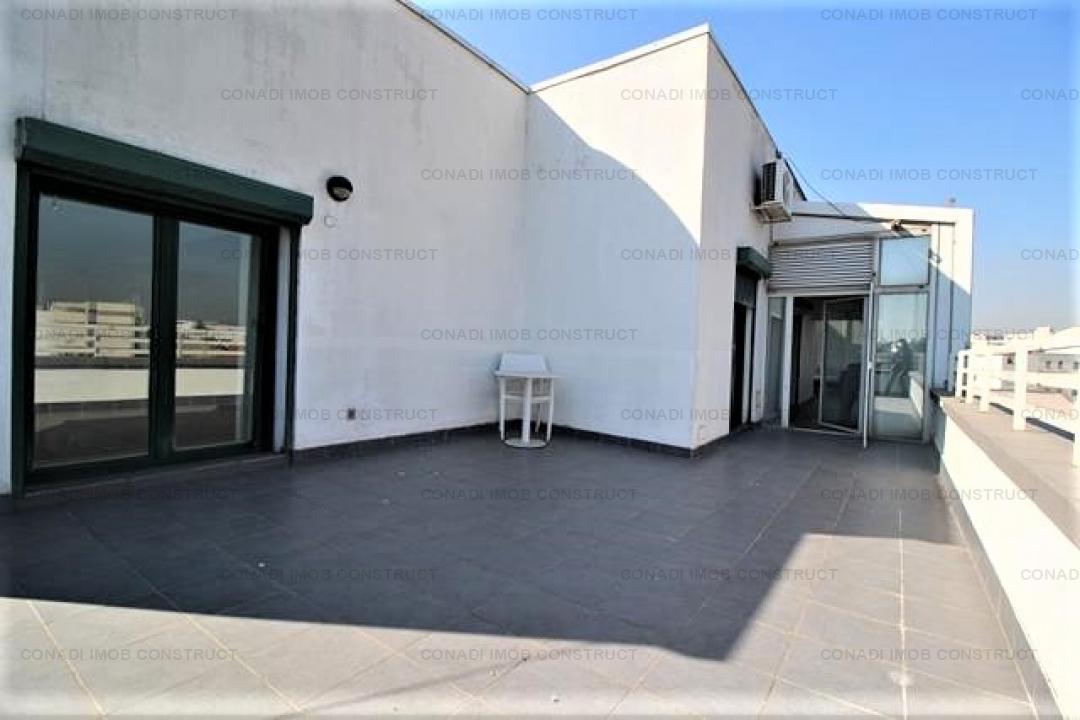 Penthouse Parc Gradina Icoanei
