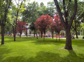 Teren cu vila pretabil reconversie sau dezvoltare zona Floreasca