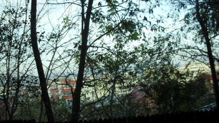 Vand Vila P+1 Craiovei
