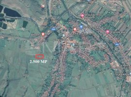 Teren  2500 mp in Orlat