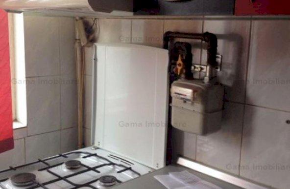 GM1066 Vanzare apartament 2 camere Dristor-Camil Ressu, Park Lake