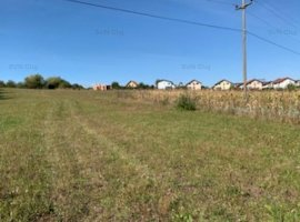 Vanzare teren constructii 10100mp, Calea Turzii, Cluj-Napoca