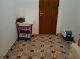 Apartament cu 2 camere in zona Crangasi