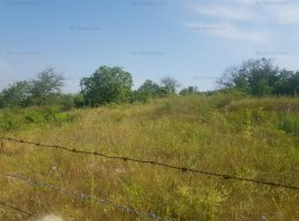 Vanzare teren intravilan zona Bucium- Iasi- 2450MP