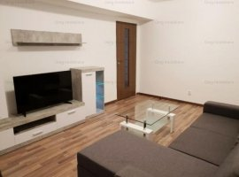 Apartament 2 camere zona Piata Victoriei-Titulescu