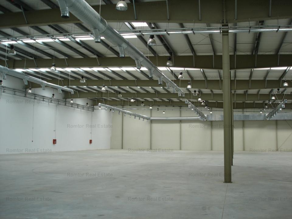 Hala depozitare si productie - Zona Est Platforma Faur