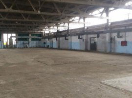 Spatiu industrial de inchiriat - Chitila
