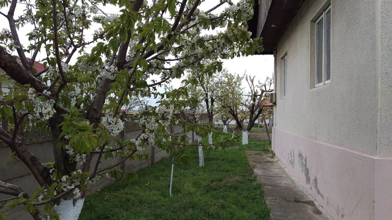 Casa Somova+ teren
