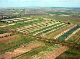 TEREN AGRICOL 1103 HA COMASAT 100%CHILIA