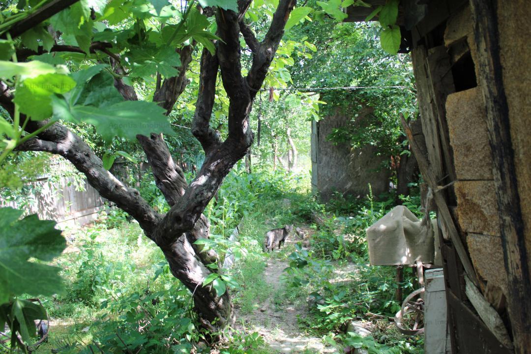 Teren si casa Batraneasca zona Avram Iancu