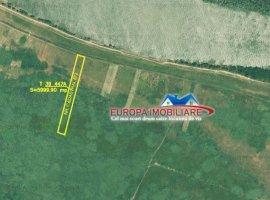 Vanzare teren constructii 6000 mp, Nufaru, Nufaru