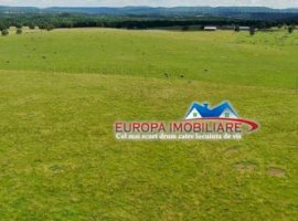 Vanzare teren constructii 15000000mp, E3, Tulcea