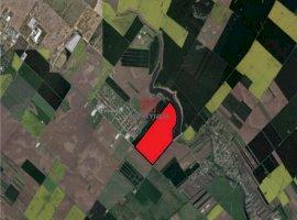 Vanzare teren constructii 400000mp, Central, Popesti-Leordeni