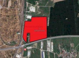 Vanzare teren constructii 250000mp, Cernica, Cernica