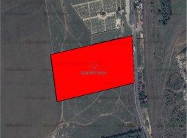 Vanzare teren constructii 50000 mp, Domnesti, Domnesti