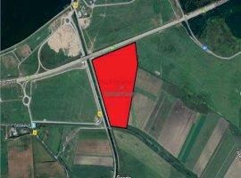 Vanzare teren constructii 220000mp, Cernica, Cernica