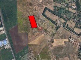 Vanzare teren constructii 20000mp, Prelungirea Ghencea, Bucuresti