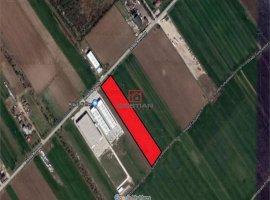 Vanzare teren constructii 12500 mp, Central, Magurele