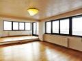 Penthouse superb - 3 camere - Charles de Gaulle
