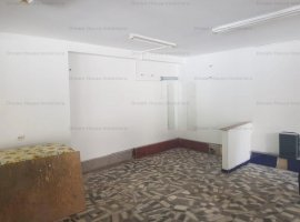 vila/spatiu comercial ideal pentru investitie