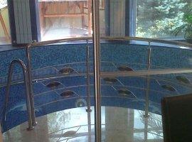 vila cu piscina interioara Damaroaia