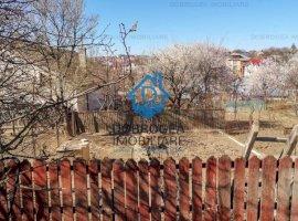 Alexandru cel Bun, casa 121 mp, constructie chirpic, teren 425 mp
