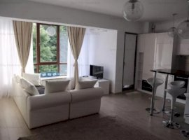 Apartament 2 camere lux Izbiceni Damaroaia