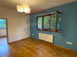Apartament spatios in vila - Piata Alba Iulia