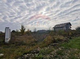 Teren pentru case 4903mp in Ciorogarla la 10 minute de Bucuresti