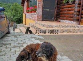 Casa din busteni in Cisnadioara
