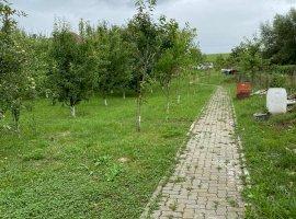 Teren 2000mp Selimbar