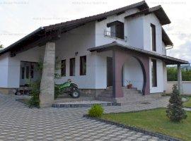 Vila deosebita in Gura Raului