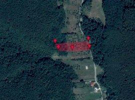 Loturi de teren în Budeasa | 680 mp | 9.500 Euro