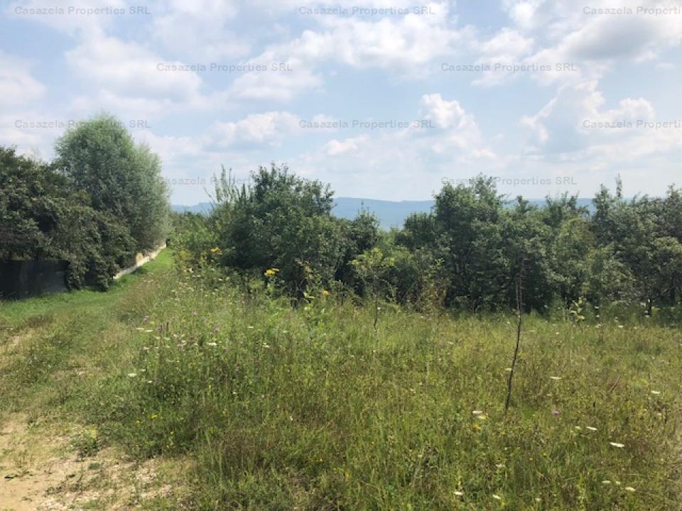 Teren intravilan in suprafata totala de 7.933 mp situat in Rm. Valcea, str. Dealul Malului, j