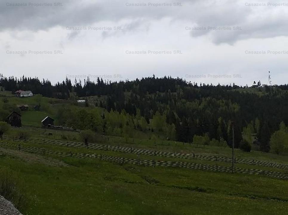 Teren 14.485 m.p. - Iacobeni, Suceava