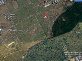 Teren - zona L - locuinte individuale - Padurea Baneasa / Drumul Stegarului