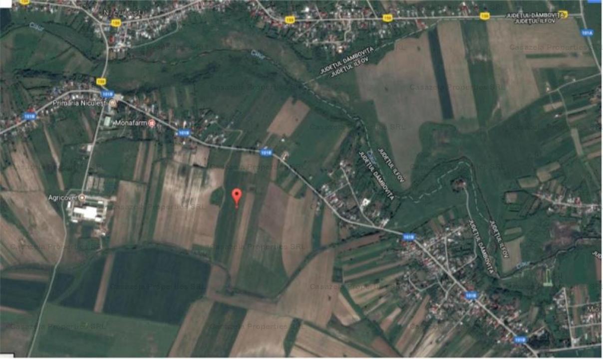 Teren intravilan 9589mp in Loc. Niculesti, Dambovita