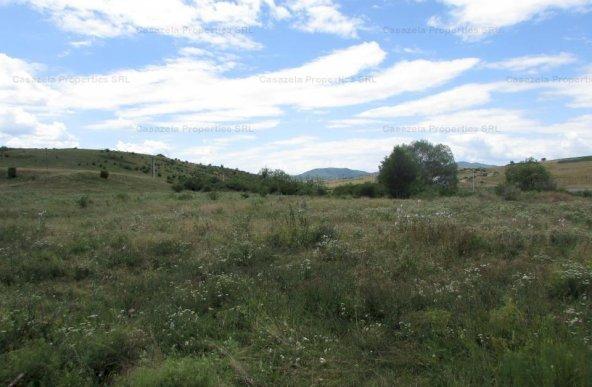 Teren extravilan 5.467mp, Santuhalm, Deva, Hunedoara